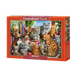 PUZZLE HOUSE OF CAT  2000...
